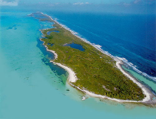 Contoy Island, Quintana Roo