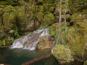 El Cielo Biosphere Reserve