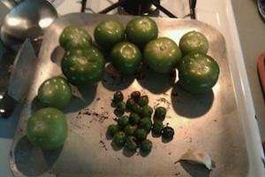 Tomate verde para la salsa